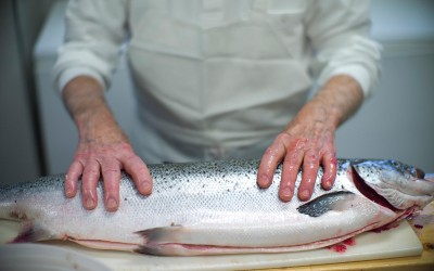 Sal Aloggia-Sallys Fish Market