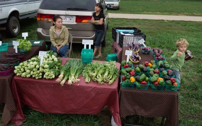 Fayetteville, Arkansas:  A large community Hmong farmers, originally from Laos, have recently settled in the area from other parts of the United States and now make up the bulk of vegetable vendors at local markets. Many grow produce varieties familiar to American palates as well as chilies, green Thai eggplants, and pumpkins for Southeast Asian recipes. One farmer, Vab Yang, substitutes cucumber for difficult-to-find green papaya in her salads.
