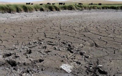 Hay Springs, Nebraska.September 2, 2012..With no rain and daily tempertures over 100 degrees, a cattle ranch's creek has dried up.
